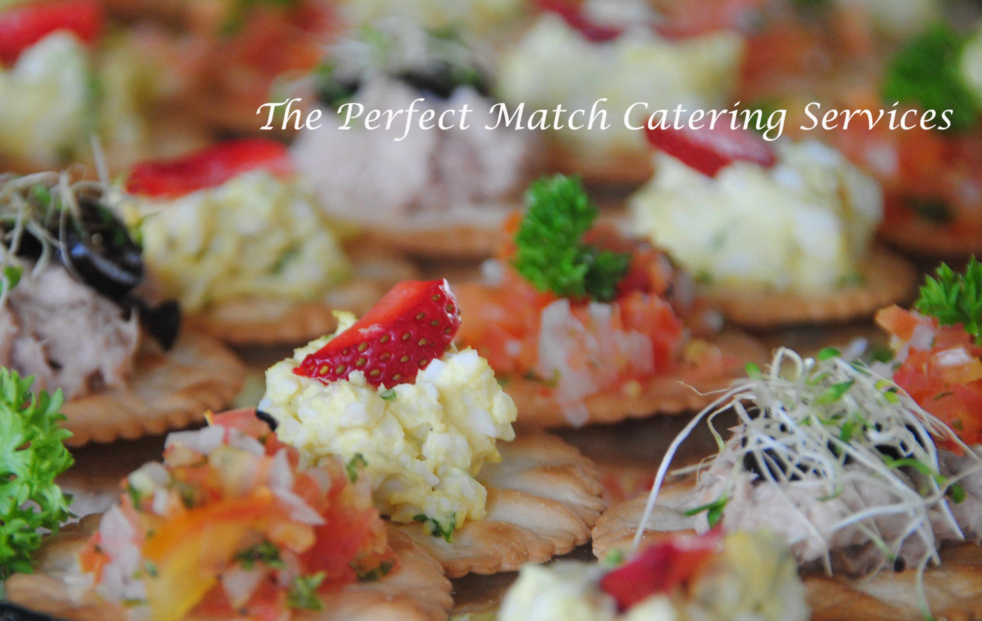 Canape finger food the perfect match catering services for Canape catering services